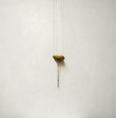 Daiya Yamamoto, 'Achillea, perpendicular belt', 2019