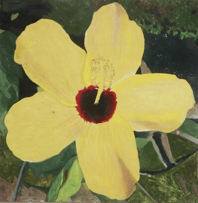 Hernan Salamanco, 'Yellow Chinese Rose', 2016