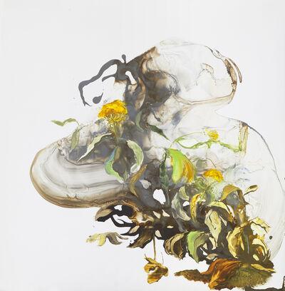Ilana Manolson, 'conscience of a seed', 2019