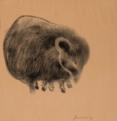 Morris Graves, 'Animal', 1954