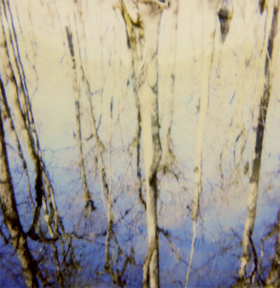 Salter Scharstein, 'Untitled 2'