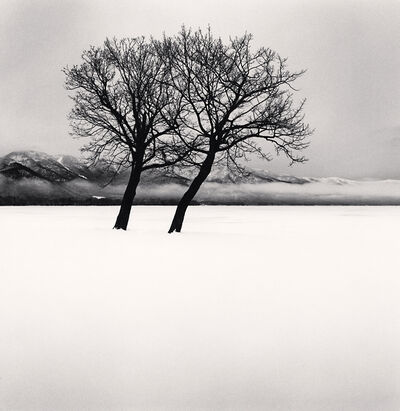 Michael Kenna, 'Dancing Trees, Kussharo Lake, Hokkaido, Japan', 2020