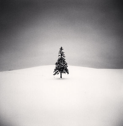 Michael Kenna, 'Lone Tree, Study 2, Bibaushi, Hokkaido, Japan', 2004