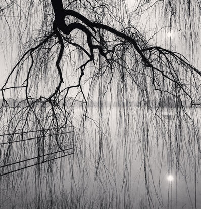 Michael Kenna, 'Lake Tree, Beihai Park, Beijing, China', 2008