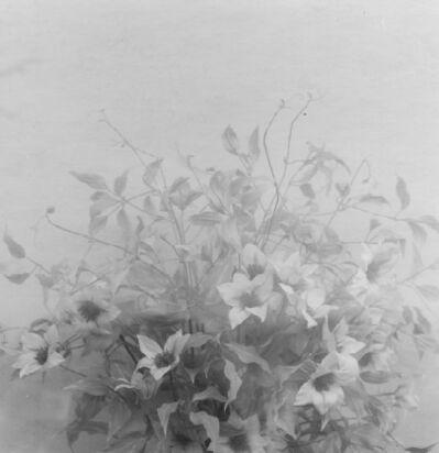 Frauke Eigen, 'Ikebana', 2008