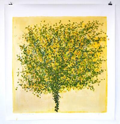 Sarah Walker (b.1966), 'Wind-burnt tree', 2020
