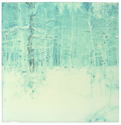Stefanie Schneider, 'Winter - everything (Wastelands)', 2003