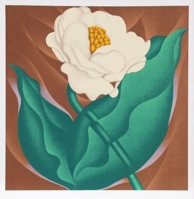 Jack Brusca, 'Globe Flower', 1978