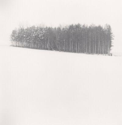 Michael Kenna, 'Quiet Snow, Biei, Hokkaido, Japan', 2004