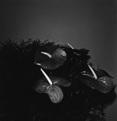 Issei Suda, 'Ginza, Chuo-ku, 1981', 1981