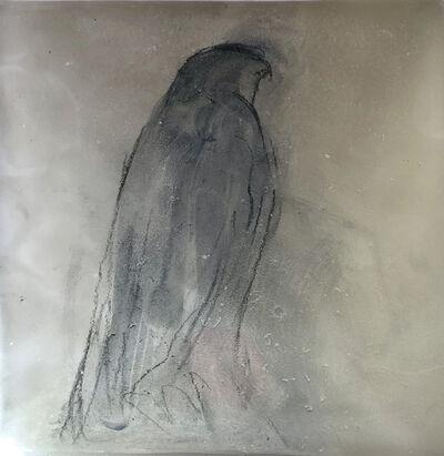 Jane Rosen, 'Hawk on Glass', 2019