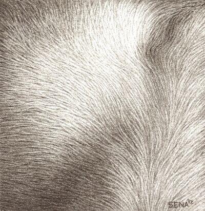 Amber Sena, 'Luxury of Adornment', 2013