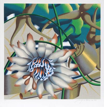 Jack Brusca, 'Morning Flower', 1981