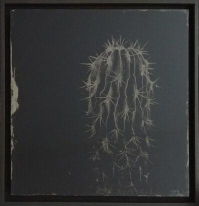 Steffen Diemer, 'Kaktus', 2019