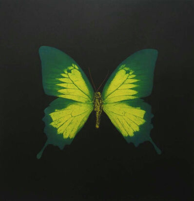Damien Hirst, 'The Souls on Jacob's Ladder Take Their Flight (large green/yellow)', 2007