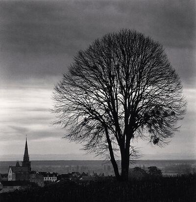 Michael Kenna, 'Olivia's Tree, Study 1, Meursault, Bourgogne, France', 2019