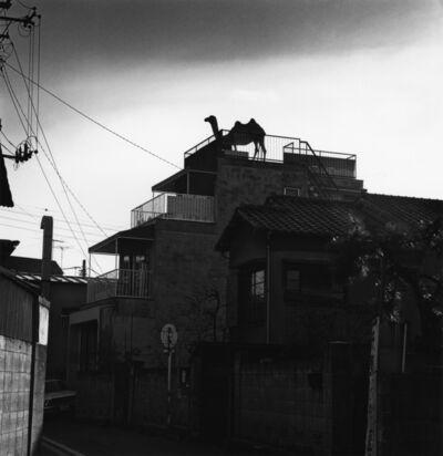 Issei Suda, 'Nishinippori, Arakawa-ku, 1980', 1980
