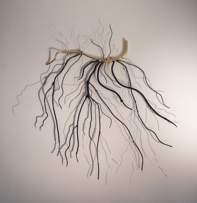 Dalya Luttwak, 'Roots or Branches', 2014