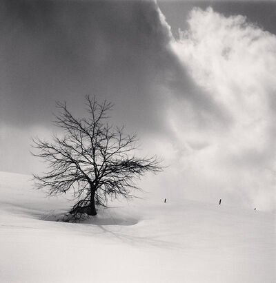 Michael Kenna, 'Tree and Three Posts, Biei, Hokkaido, Japan', 2013