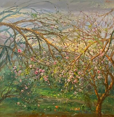 Bruno Zupan, 'Outlying Fields, Valldemossa ', 2017