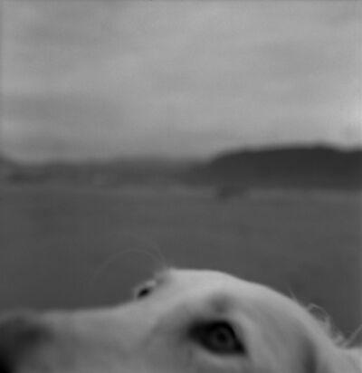 """Alberto García Alix, '""""El lamento de un perro""""', 2012"""