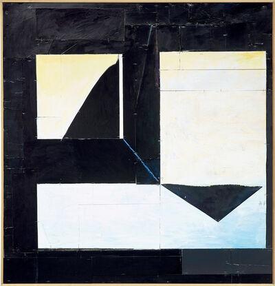 Florian Schmidt, 'Untitled(Immunity)7', 2011