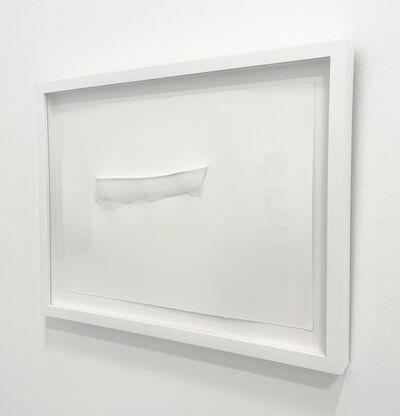 Jill Downen, 'Hybrida 9', 2008