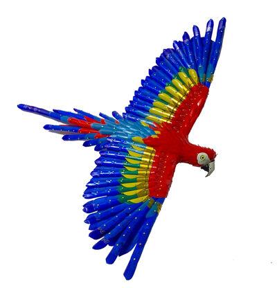 Federico Uribe, 'Macaw', 2017