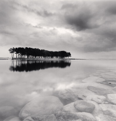 Michael Kenna, 'Pine Trees, Study 3, Wolcheon, Gangwondo, South Korea. 2011', 2011