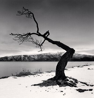Michael Kenna, 'Kussharo Lake Tree, Study 12, Kotan, Hokkaido, Japan', 2008