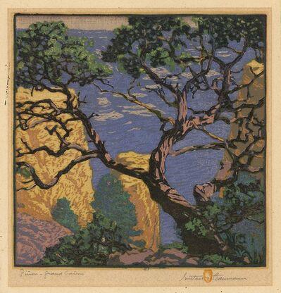 Gustave Baumann, 'Pinon - Grand Canyon.', 1921
