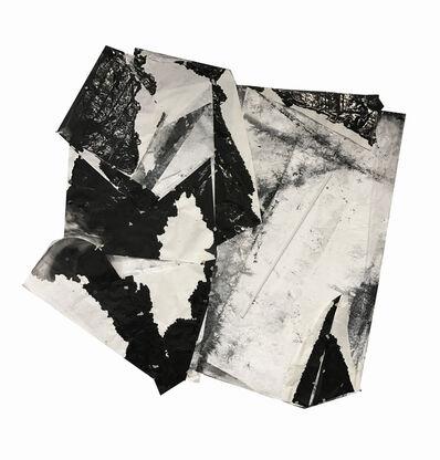 Zheng Chongbin 郑重宾, 'Cluster No.3 合体3号 ', 2017