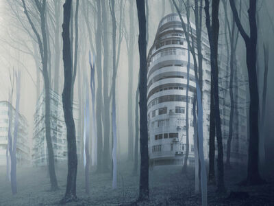 Daphné Mandel, 'Organic City #4', 2019