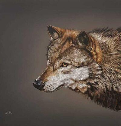Giovanni Confortini, 'Wolf', 2019