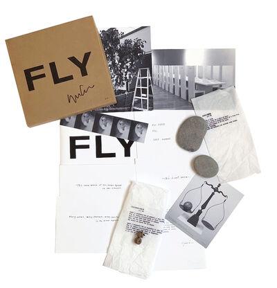 Yoko Ono, 'Fly', 1996