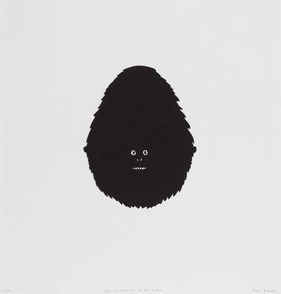 Rose Blake, 'Gorilla Looking in the Mirror', 2015