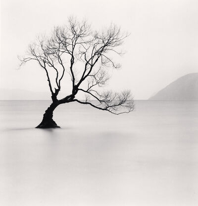 Michael Kenna, 'Wanaka Lake Tree - Study 1, Otago, New Zealand. ', 2013