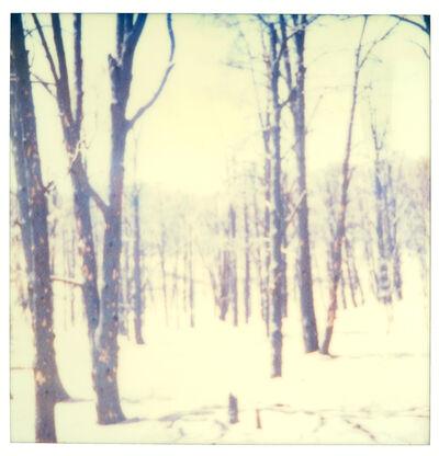 Stefanie Schneider, 'Frozen IV (Stranger than Paradise)', 2001