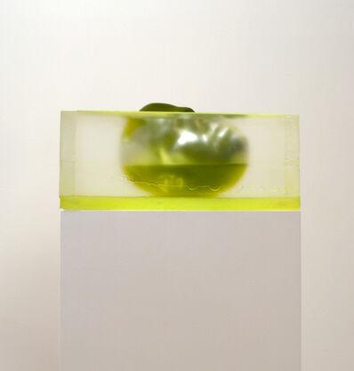 Rona Pondick, 'Floating Green'
