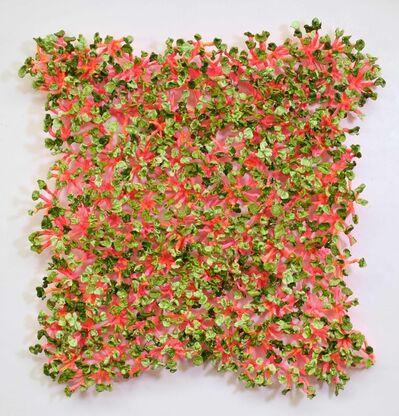 Stefan Gross, 'Bloomer Mangold', 2017