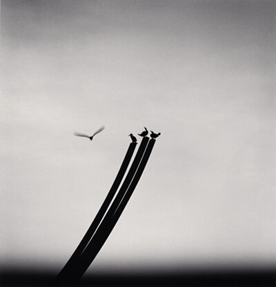 Michael Kenna, 'Four Birds, St Nazaire, France', 2000