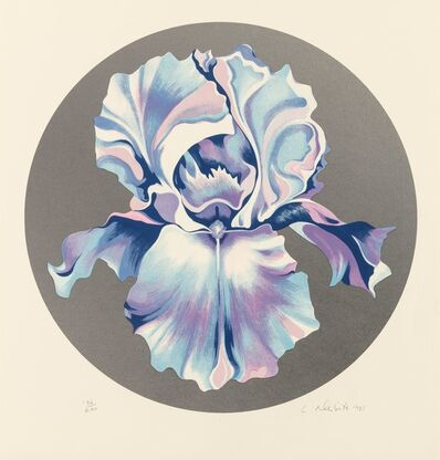 Lowell Nesbitt, 'Iris on Silver', 1981