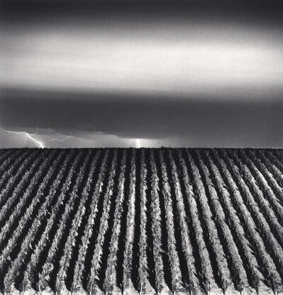 Michael Kenna, 'CHATEAU LAFITE ROTHSCHILD, STUDY 6, BORDEAUX, FRANCE, 2012', 2012