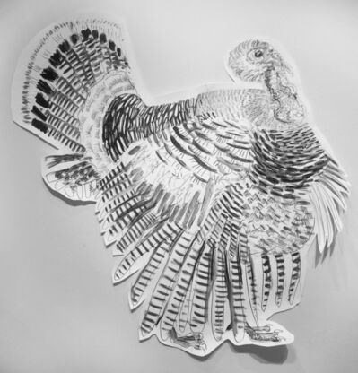 Jules Buck Jones, 'Wild Turkey (Melegris gallopavo)', 2019