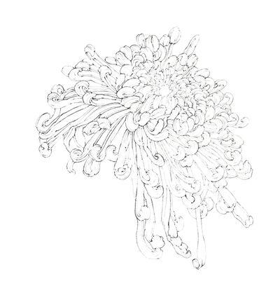 Ashley Yeo, 'Chrysanthemun', 2019