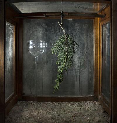 Yuval Yairi, 'Camera Obscura', 2019