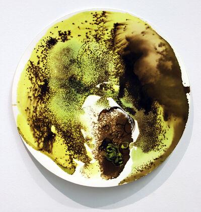 Vlad Kulkov, 'Citron withering ', 2019