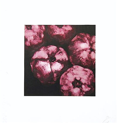 Donald Sultan, 'Pomegranates', 1994