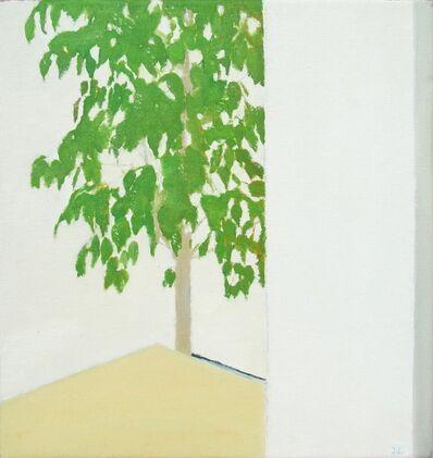 Jose Ángel Sintes, 'Ficus', 2017