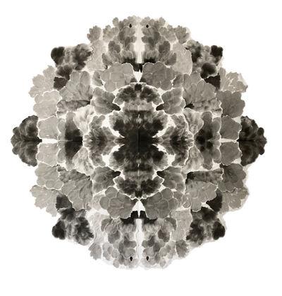 Allison Svoboda, 'Mandala Blossom', 2010-2015
